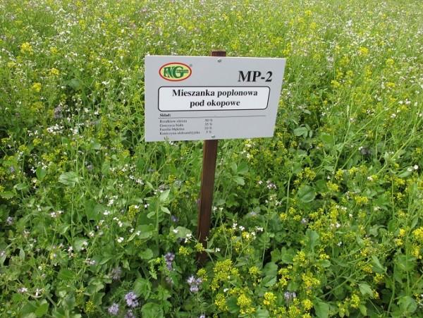 MP 2 -mieszanka poplonowa pod okopowa - firma nasienna GRANUM